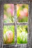 Huevos de Pascua en hierba verde Imagen de archivo