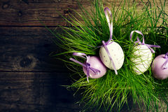 Huevos de Pascua en hierba verde fresca en fondo de madera horizonta Imagen de archivo