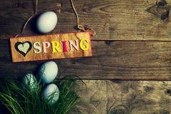Huevos de Pascua en hierba verde fresca en fondo de madera Visión superior Imagenes de archivo
