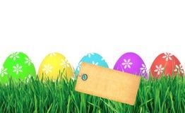 Huevos de Pascua en hierba verde y la tarjeta en blanco aisladas en blanco Fotos de archivo libres de regalías