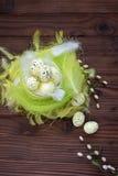 Huevos de Pascua en jerarquía y pluma Fotografía de archivo libre de regalías