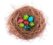 Huevos de Pascua en la jerarquía pintada, aislado en el fondo blanco Huevos de codornices coloreados Imagenes de archivo