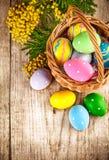 Huevos de Pascua en mimisa de la cesta de mimbre y de la rama Fotos de archivo libres de regalías