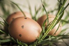Huevos de Pascua en una hierba Foto teñida, filtrada y coloreada Imagen de archivo