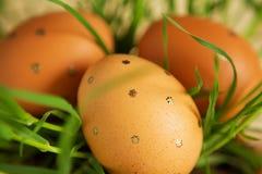 Huevos de Pascua entre troncos de la hierba Fotografía de archivo