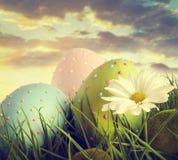 Huevos de Pascua grandes en la hierba alta Imágenes de archivo libres de regalías