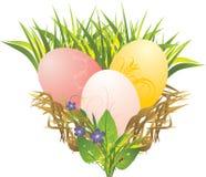 Huevos de Pascua, hierba, flores del resorte y mariquita ilustración del vector