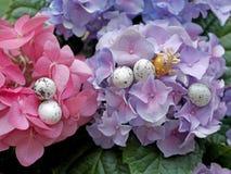 Huevos de Pascua ocultados entre las flores Adornos de la primavera y de Pascua Fotos de archivo libres de regalías