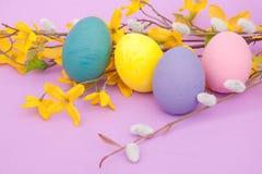 Huevos de Pascua pintados con las ramitas del resorte Fotografía de archivo