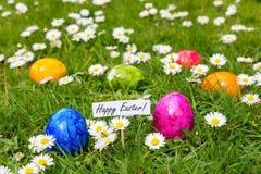 Huevos de Pascua pintados en hierba con las margaritas blancas Fotos de archivo