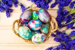 Huevos de Pascua pintados y flores púrpuras de la primavera Fotografía de archivo libre de regalías