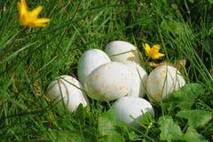 Huevos de Pascua punteados que mienten en una pila en la hierba verde Foto de archivo