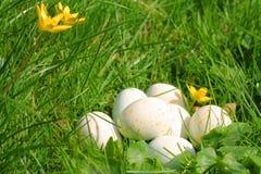 Huevos de Pascua punteados que mienten en una pila en la hierba verde Foto de archivo libre de regalías