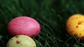 Huevos de Pascua que caen en la hierba metrajes