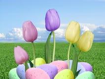 Huevos de Pascua reales y tulipanes púrpuras y amarillos rosados con el fondo de la hierba verde y del cielo azul Imágenes de archivo libres de regalías