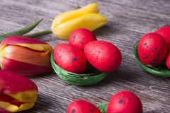 Huevos de Pascua rojos en jerarquía verde y tulipanes coloridos Imagenes de archivo