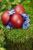 Huevos de Pascua rojos hermosos Imagen de archivo