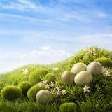 Huevos de Pascua verdes imagenes de archivo