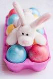 Huevos de Pascua y conejo divertido. Fotografía de archivo libre de regalías