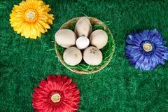 Huevos de Pascua y flores coloridas fotografía de archivo libre de regalías