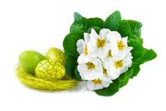 Huevos de Pascua y flores de la primavera aisladas en blanco imagenes de archivo