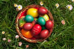 Huevos de Pascua y flores del resorte Fotografía de archivo libre de regalías