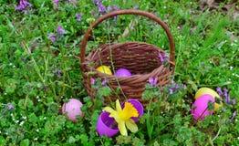 Huevos de Pascua y flores salvajes Imagen de archivo libre de regalías