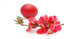Huevos de Pascua y jarro de la arcilla Imágenes de archivo libres de regalías