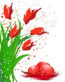 Huevos de Pascua y tulipanes rojos Imágenes de archivo libres de regalías