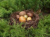 Huevos de piedra Fotografía de archivo libre de regalías