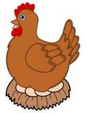 Huevos de una gallina del empollamiento libre illustration