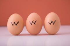 Huevos de WWW Foto de archivo