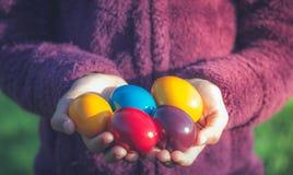 Huevos del comedor en manos Foto de archivo