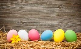 Huevos del comedor en viejo fondo de madera Foto de archivo libre de regalías