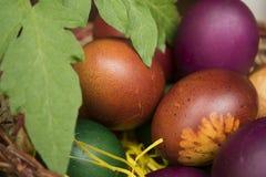 Huevos del este Fotografía de archivo