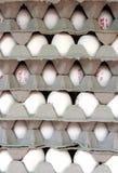 Huevos del mercado Foto de archivo