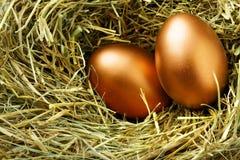 Huevos del oro Imagen de archivo