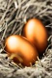 Huevos del oro Fotos de archivo libres de regalías