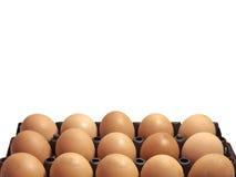 Huevos del pollo Imagen de archivo