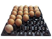 Huevos del pollo Fotografía de archivo libre de regalías