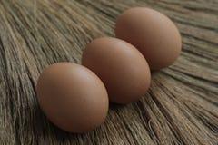 Huevos del pollo con el fondo de las hierbas Imagenes de archivo