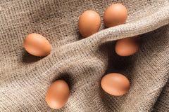 Huevos del pollo de Brown fotos de archivo