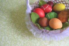 Huevos del pollo de Pascua Fotos de archivo libres de regalías