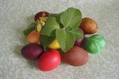 Huevos del pollo de Pascua con la mariposa Imagen de archivo libre de regalías