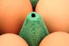 Huevos del pollo en cartón Imagen de archivo libre de regalías
