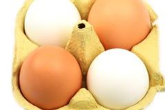 Huevos del pollo en cartón Fotos de archivo libres de regalías