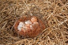 Huevos del pollo en cesta en paja Foto de archivo libre de regalías