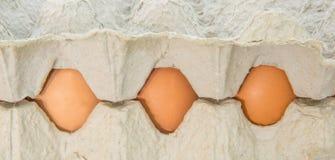 Huevos del pollo en el cartón IV del huevo foto de archivo