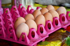 Huevos del pollo en el panel plástico Fotos de archivo libres de regalías