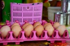 Huevos del pollo en el panel plástico Foto de archivo libre de regalías